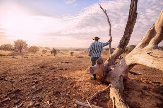farmer looking over outback landscape