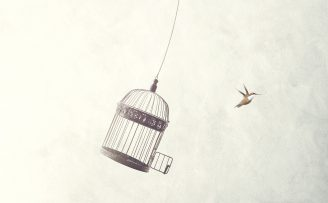 Illustration of a bird flying free from it's cage